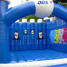 Bouncy castle ODS